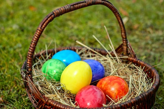 Things to Do In Plymouth MA: DROP IN! Sat. Easter Egg Hunt at Camp Clark